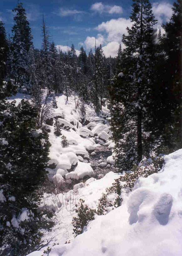 Winter sports for Shaver lake fishing report